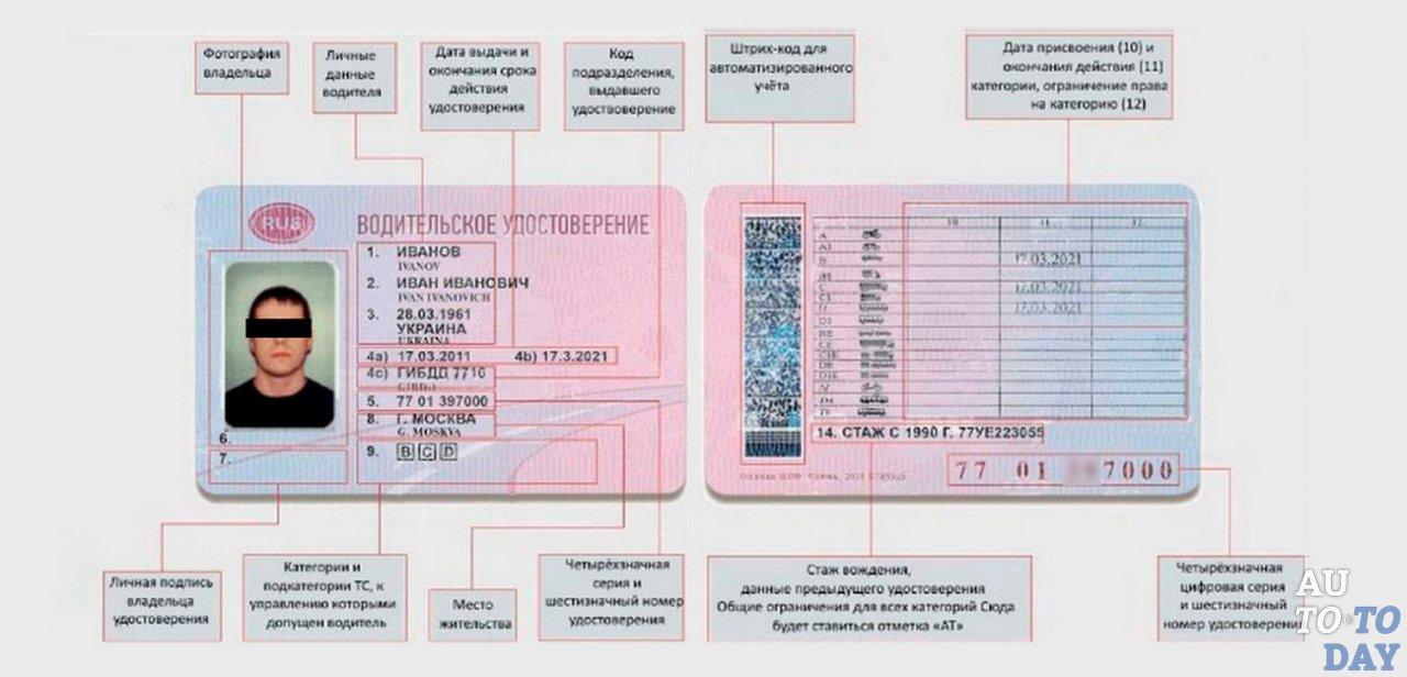 Узнать дату водительского удостоверения по номеру